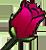:flowerose: